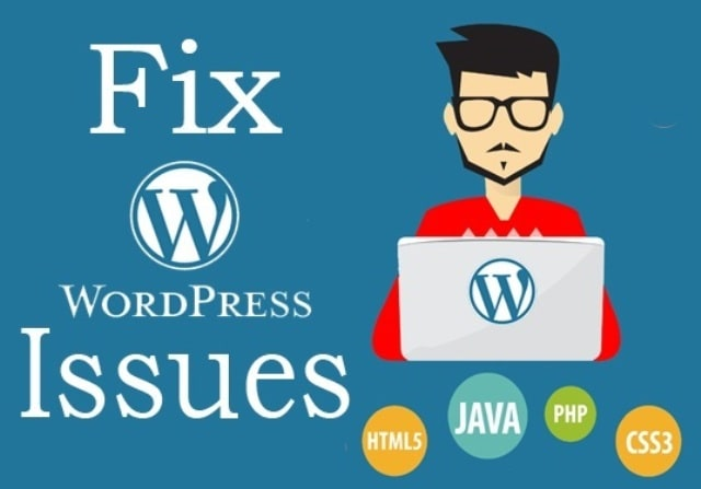 I Will Give You WordPress Help And Fix WordPress Website Errors Quickly