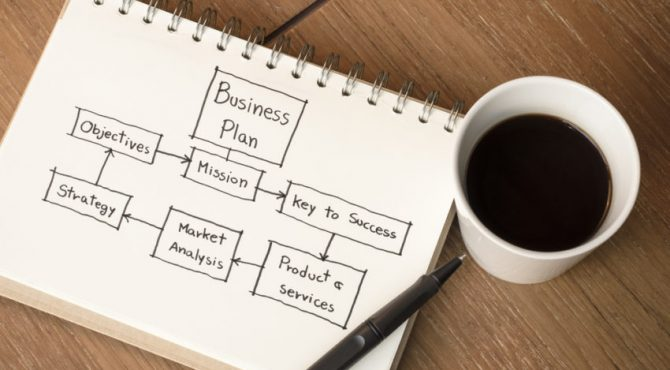 I will write an investor ready start up business plan